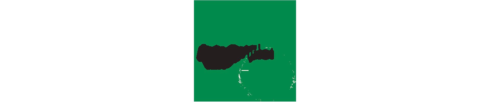Cheplapharm 2017